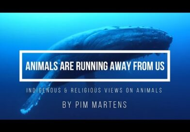 Animals Are Running Away From Us – Indigenous & Religious Views on Animals
